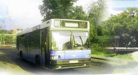 avtobus.jpg